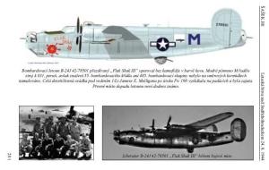 Letecká bitva nad Jindřichohradeckem 24. 8. 1944